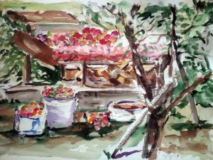 watercolour painting of orchard in russian countryside by artist roy munday, teaches art in liverpool and merseyside